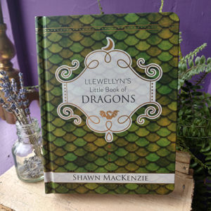 Little Book of Dragons