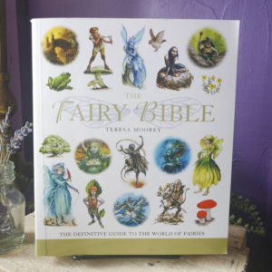 The Fairy Bible at Dreaming Goddess in Poughkeepsie, NY