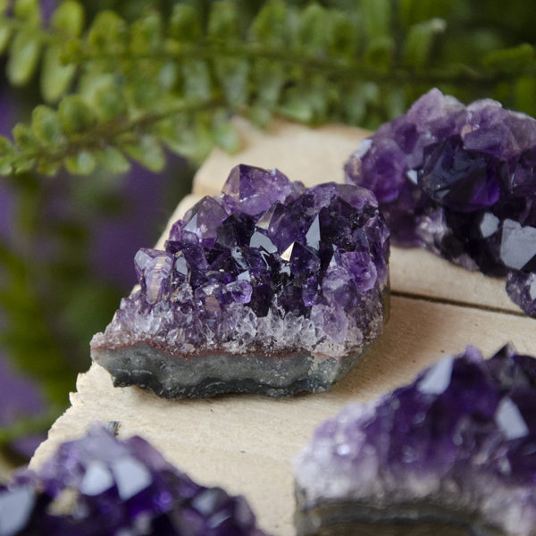 Amethyst Clusters at Dreaming Goddess in Poughkeepsie, NY