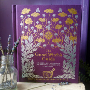 The Good Witch's Guide ~ A Modern-Day Wiccapedia of Magickal Ingredients and Spells at DreamingGoddess.com