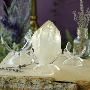 Lucite Tulip Stand at the Dreaming Goddess