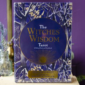 The Witches' Wisdom Tarot at DreamingGoddess.com